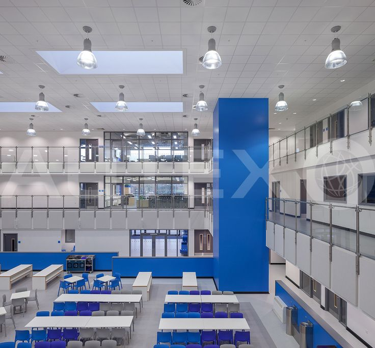 Autex Interior Acoustics - Quietspace® Panel wrapped in Vertiface® - Wolfreton School, London, UK - Colour: Ink - Direct fixed to wall - Acoustics in Education