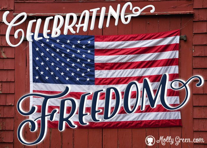 Independence Day: More than a BBQ By: Melissa Price- Quick poll: what is your favorite part about celebrating the Fourth of July? Is it a fun-in-the-sun day at the lake, juicy watermelon, sweet corn slathered in butter, or a long nap in a hammock? Who doesn't enjoy a brilliant fireworks display or a festive parade?  http://mollygreen.com/blog/Independence-Day-More-than-a-BBQ/