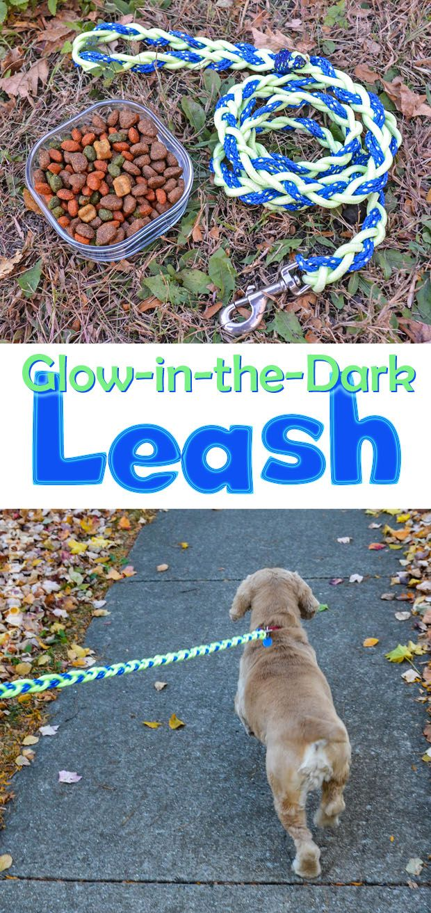 This shop has been compensated by Collective Bias, Inc. and its advertiser.  All opinions are mine alone. #PedigreeGives #CollectiveBias Here is a tutorial for a glow-in-the-dark dog leash. The leash is perfect for keeping man's best friend safe on nighttime walks. We have a Cocker Spaniel named Cooper. We adopted him from the humane society …