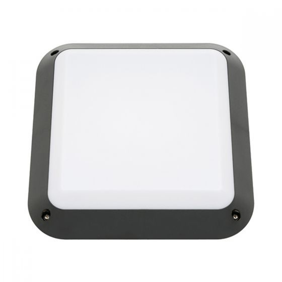 Cougar Lighting Ceduna Square Outdoor Oyster Wall Light