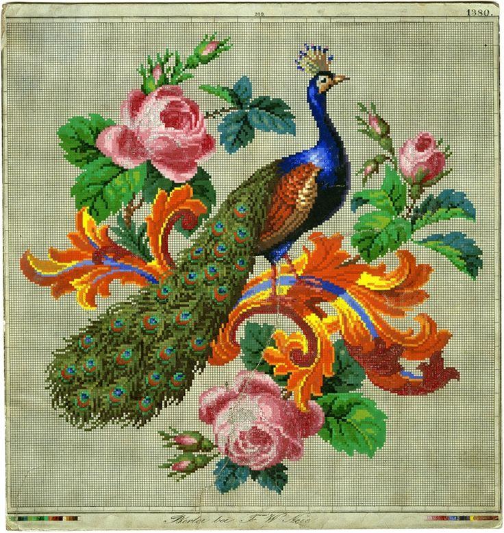 Beautiful Berlin Woolwork Peacock and Roses Digitalt Museum - Mønster, broderimønster