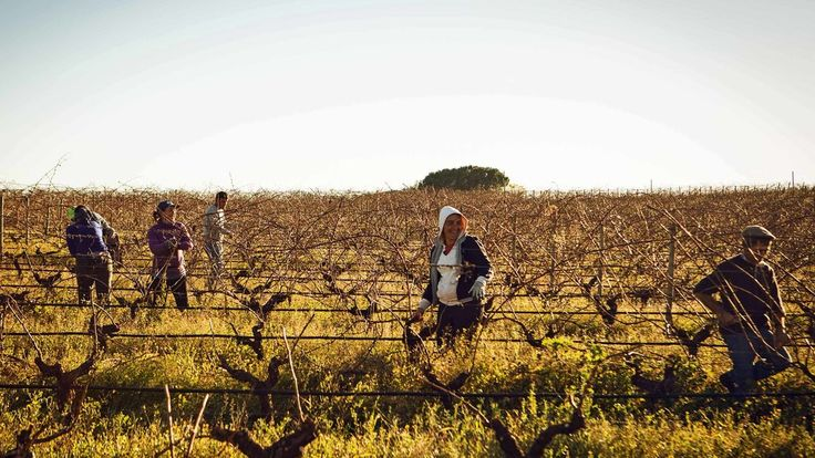 In #Portugal, a Land Finely Aged Like Wine - NYTimes.com
