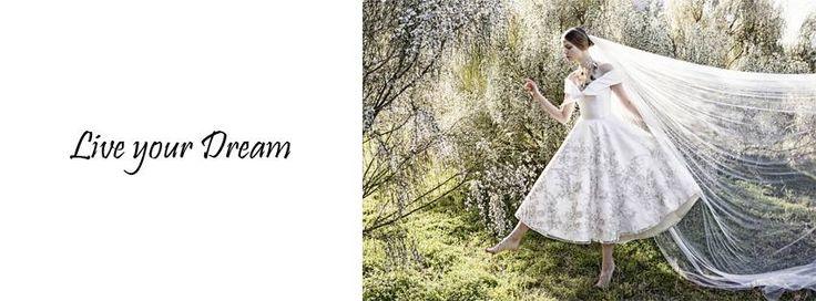 Live your Dream  www.VassilisZoulias.com
