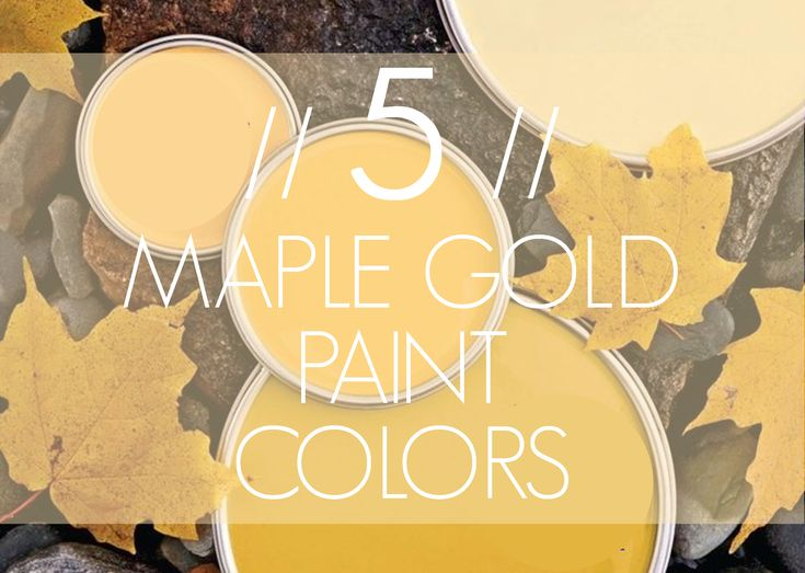 Imagine Design 5 Maple Gold Paint Colors From Better Homes Gardens