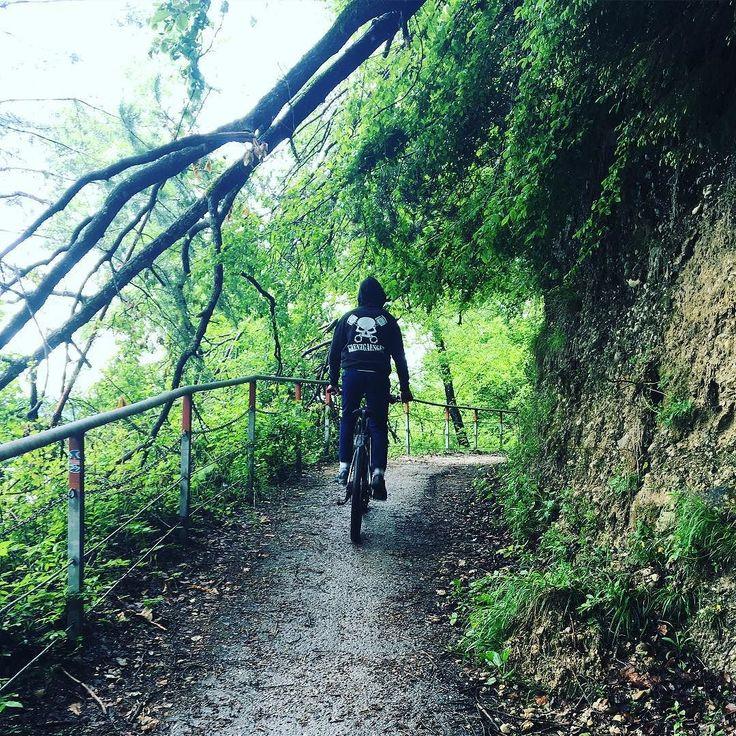 Instagram picutre by @patrick04_official: #grenzig #grenzgaengerhoodie#grenzgaenger#grenzgaengerpulli#ebike##grenzig #grengaenger#grenzstyle#endurofreeriders_official#enduro#freerider#motocross#ktmsx#ktmsx85#ktm#85cc#85cc#125ccm##ride#freedomride#happydays#awesomedays#2stroke#forrest#2weehls#gopro#fun#nice - Shop E-Bikes at ElectricBikeCity.com (Use coupon PINTEREST for 10% off!)