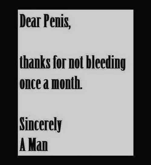 Dear Penis Bob And Tom