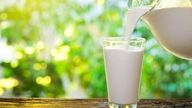 Alimentos ricos em cálcio