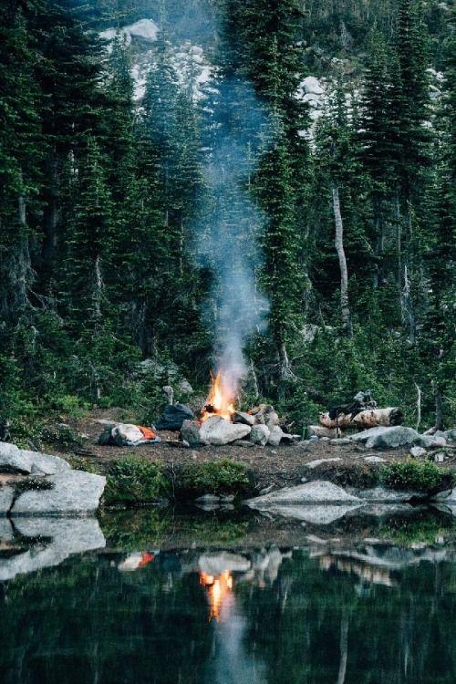 pique nique feu de camps fire forêt forest nature