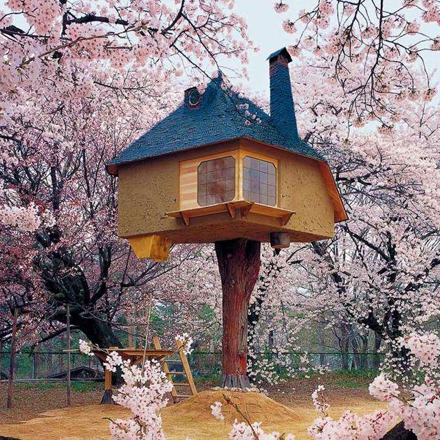 Fujimori, Japan, by Fernzo
