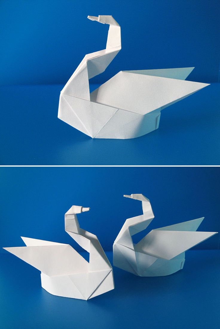 25 best ideas about origami swan on pinterest simple