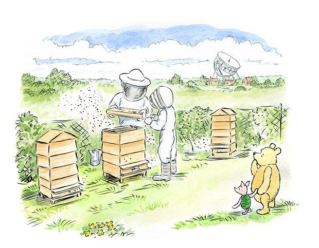 The British Beekeepers Association (BBKA) in partnership with Eg