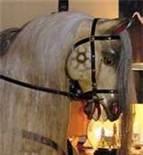 Antique Rocking Horses For Sale - Bing Images