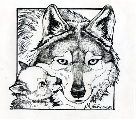 Coloring pages go teach kids about the Mexican wolf!