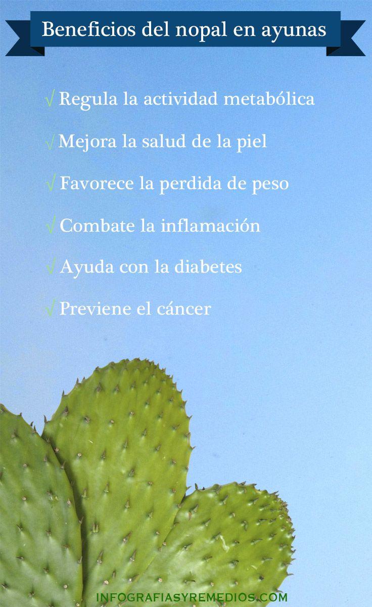 El nopal u Opuntia ficus-indica según su nombre científico, esel fruto de un tipo de cactus muy extendido por la zona deMexico y Latinoamérica, donde es considerado un remedio muy popular por sus multiples beneficios para la salud. Tanto es así, que los aztecas ya usaban esta planta hace miles de años como remedio natural …