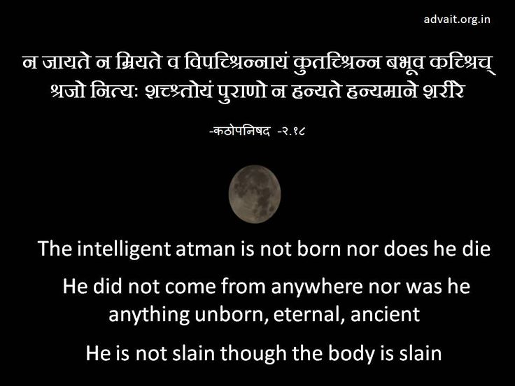 The intelligent atman is not born nor does he die  He did not come from anywhere nor was he anything unborn, eternal, ancient He is not slain though the body is slain. ~Kathopanishad