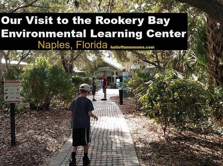 """""""The visitor center offers a variety of hands-on experiences, including 2,300-gallon aquarium and interactive exhibits addressing research and stewardship efforts ongoing within the Reserve, as well as a nature store, gallery and picnic area."""""""