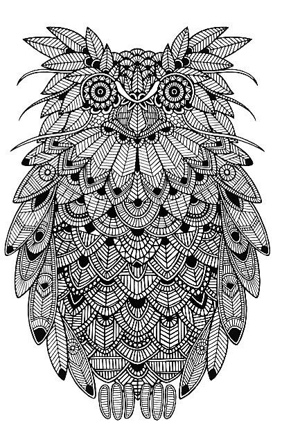 3413 Best Adult Colouring Images On Pinterest