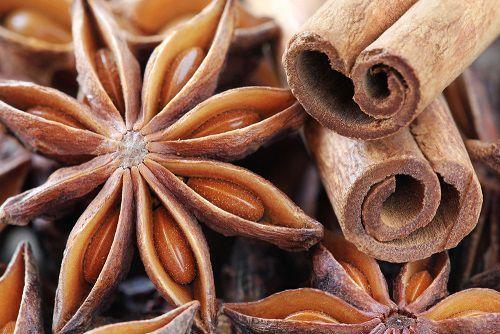 Elle est brune, elle est belle, elle sent bon. Elle s'appelle Cannelle, et son parfum envoûtant embaume nos plats et nos maisons. Suivez-nous à la découverte de cette plante si riche et savoureuse !