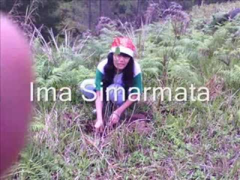 FORGEMSI Salurkan Bantuan Dana Kepada Keluarga Siahaan Korban Pembangunan Double Track KA. | Simataraja - Simarmata