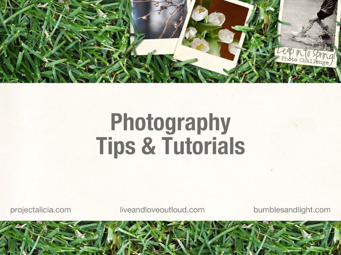 Free Leap Into Spring Photo Challenge Photography Tips & Tutorials eBook