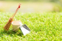 家の掃除で花粉症軽減?!  この時期にたくさん漂っているスギ花粉の直径はおよそ0.03mm目に見えなくても窓や換気口などから入ってきていますこの時期は特に丁寧な掃除を心掛け換気をする際は花粉が多く飛ぶ11時から14時頃を避けてシーツやクッションカーテンなどこまめに洗濯して花粉を取り除きましょう  潤った肌を持続できるように日々のケアでお肌をますます輝かせましょう   お肌が潤うアルシーの自然派化粧品 http://althem.net/   HPはコチラ http://www.yuubi.co.jp/   #アルシー #ゆう美 #美容 #美肌 #潤い #ナチュラルソープ #ケア #オールインワン #自然派 #ナチュラル #スキンケア #花粉症 #福岡市  tags[福岡県]