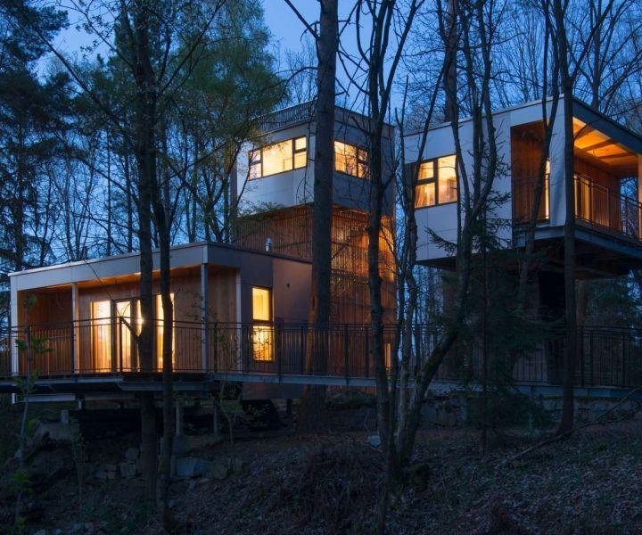 2 Tage Faszination Natur im Luxus-Baumhaus | watado.de - wissen was geht.