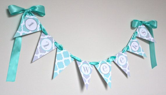 Pregnancy & Baby's First Year Pennant Banner / Newborn Monthly Photo Prop / Aqua Grey Moroccan Tile Design / Custom Baby Shower / Garland on Etsy, $32.00