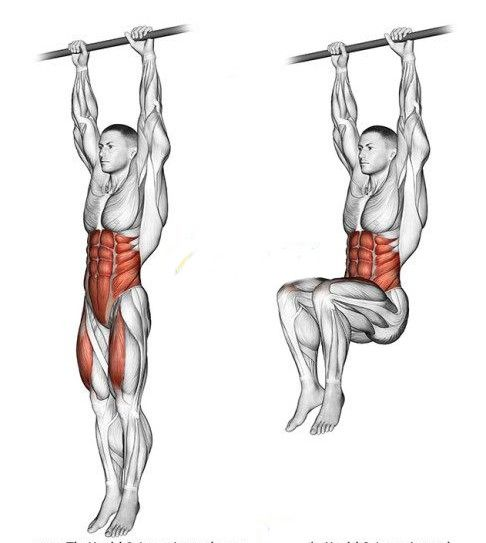 Image result for HANGING LEG RAISE
