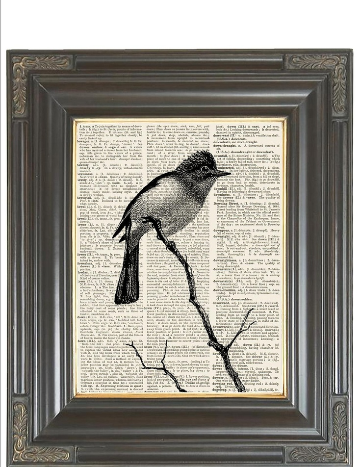 BOGO SALE Vintage black and white bird  Dictionary art print printed on old recycled dictionary book page  No. 244. $9.75, via Etsy.