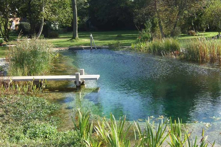 This is a swimming pool. It uses plants to keep the water clean, just filtering the water to keep the nutrient levels low enough that algae can't grow so your water stays clean. This is the first time I've wanted a swimming pool in my yard...
