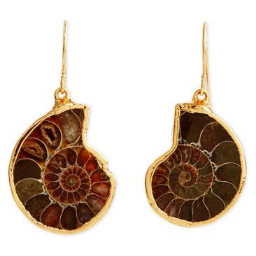 Check out this item at One Kings Lane! Ammonite Fossil Earrings