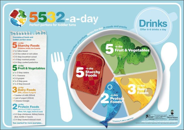 5532-a-day resource - British Nutrition Foundation for toddlers