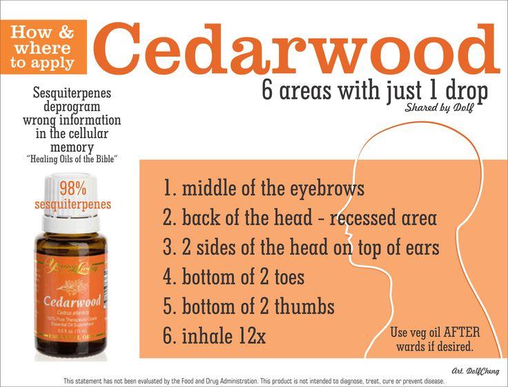 Cedarwood essential oils
