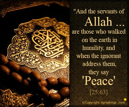 Allah ... Quran >>>    http://quranconnection.com/contact-us-to-learn-arabic-now/?wpam_id=30