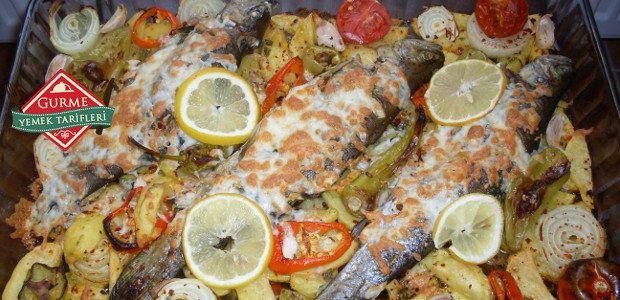 Fırında Patatesli Alabalık - Pratik Yemek Tarifleri. Gurme resimli kolay pratik Fırında Patatesli Alabalık nasıl yapılır yapılışı yapımı hazırlanışı
