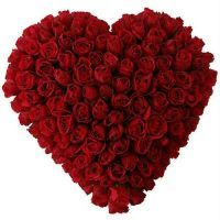 100 Roses Heart  (Valentines day)  Heart Shaped arrangement of Red roses, Can't go wrong with this.