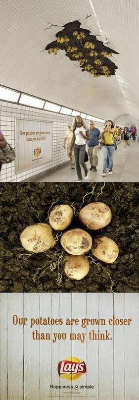 Potatoes growing in the subway? wow, what a way to get the attention of commuters