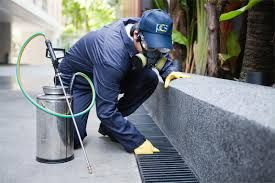 Our Gold Coast pest control team can also help to clean up any areas where they might have inhabited over time, so you can have your home restored back to its original condition without having to pay for a separate exterminator.