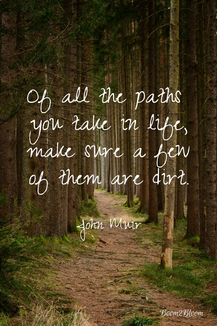 Of all the paths you take in life make sure a few of them are dirt. John Muir.
