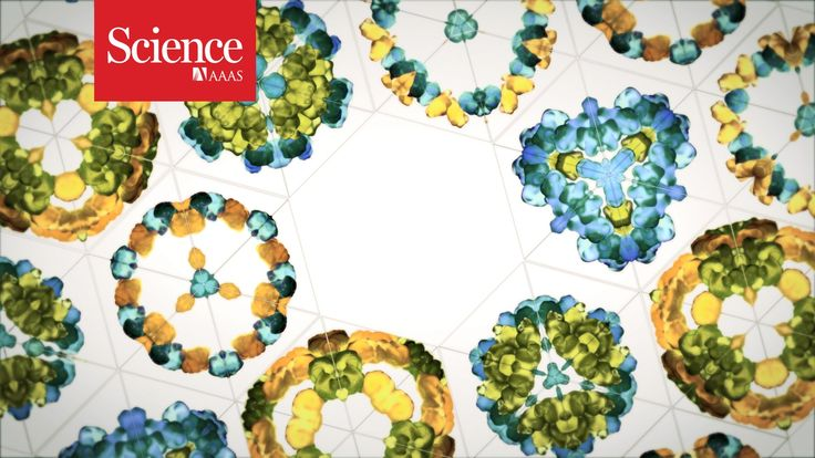 The protein folding revolution  What a fantastic video! Science Magazine uses great visuals to engage the question of the protein folding problem. This video illustrates some great advances to biochemistry in recent years concerning protein folding.