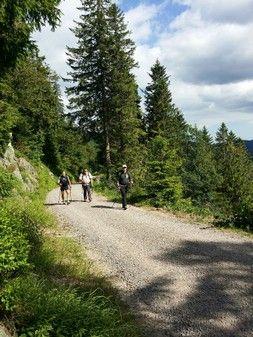 Schwarzwald Wanderwochenende. Das Schwarzwald-Team organisiert Touren & Events der besonderen Art. 24 Stunden Powertrekking. 2 Tage Wanderung im Schwarzwald. Individuelle Firmenevents. Im Hochschwarzwald und auf der ganzen Welt.
