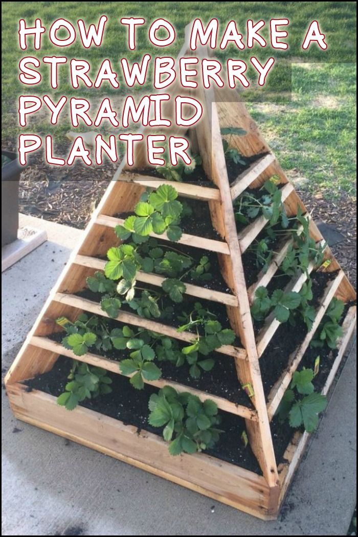Table Jardin Pvc How To Make A Strawberry Pyramid Planter | Gardening