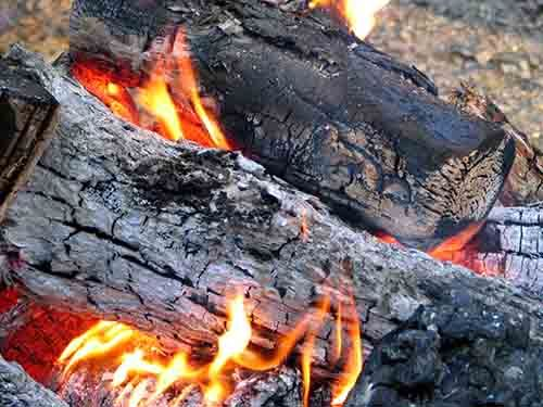 Which Firewood Gives The Most Heat Guide Btu Rating