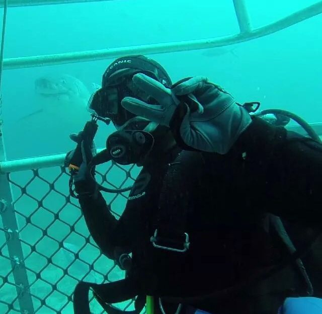 Diving in South Australia - this water is full of the largest sharks in the world! The great white