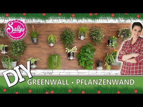 """Eine """"Green Wall"""" ganz einfach selber machen / DIY / Sallys Welt – YouTube"""