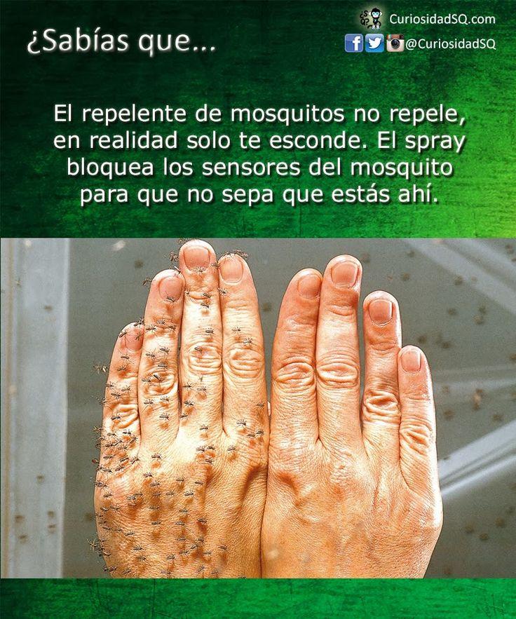 El repelente de mosquitos no repele, en realidad solo te esconde ~ ¿Sabías que?