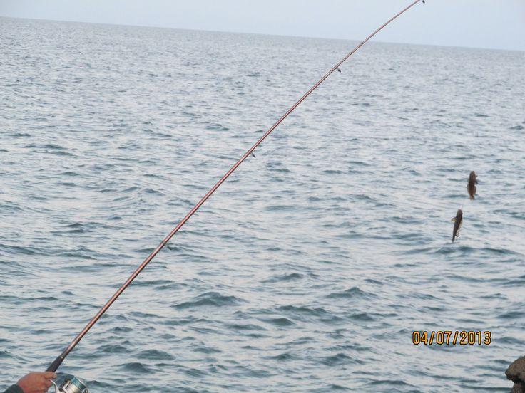 Micul Golf  marea captura :))