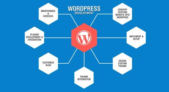 WordPress | CMS | Advantages of WordPress Website | Disadvantages of WordPress Website | Features of WordPress
