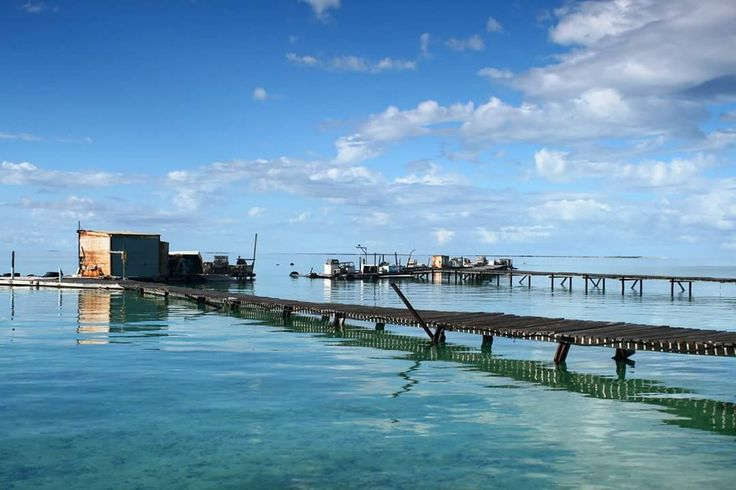 The magnificent Abrolhos Islands 🏝