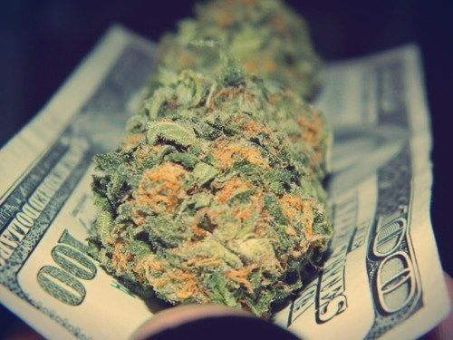why weed should be legal essay